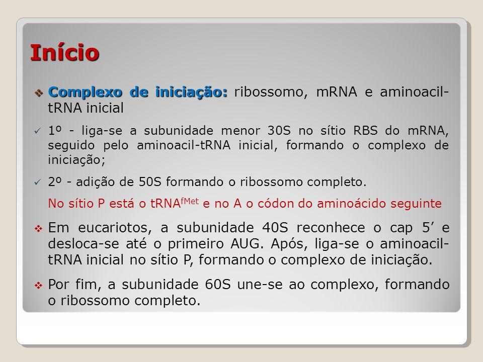 Início Complexo de iniciação: ribossomo, mRNA e aminoacil- tRNA inicial.