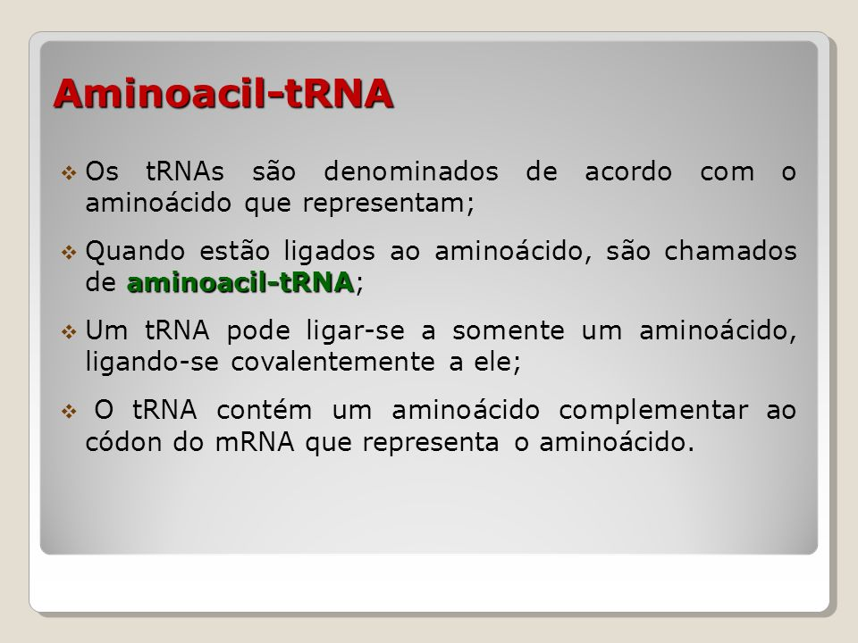 Aminoacil-tRNA Os tRNAs são denominados de acordo com o aminoácido que representam;