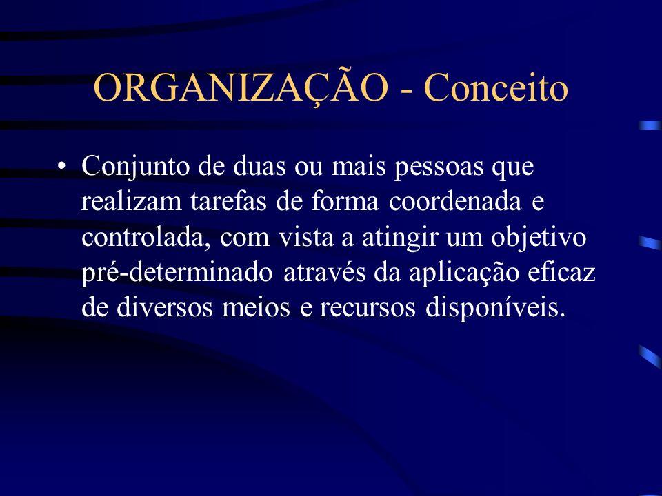 ORGANIZAÇÃO - Conceito