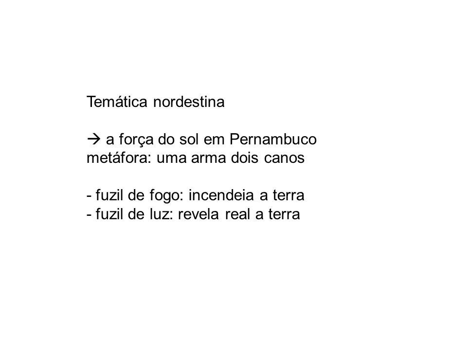 Temática nordestina  a força do sol em Pernambuco. metáfora: uma arma dois canos. - fuzil de fogo: incendeia a terra.