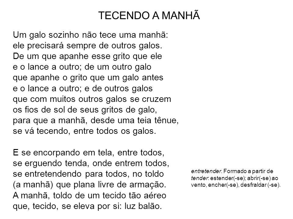 TECENDO A MANHÃ