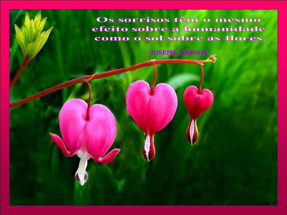 efeito sobre a humanidade como o sol sobre as flores.