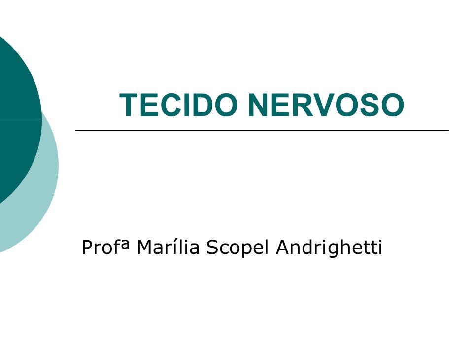 Profª Marília Scopel Andrighetti