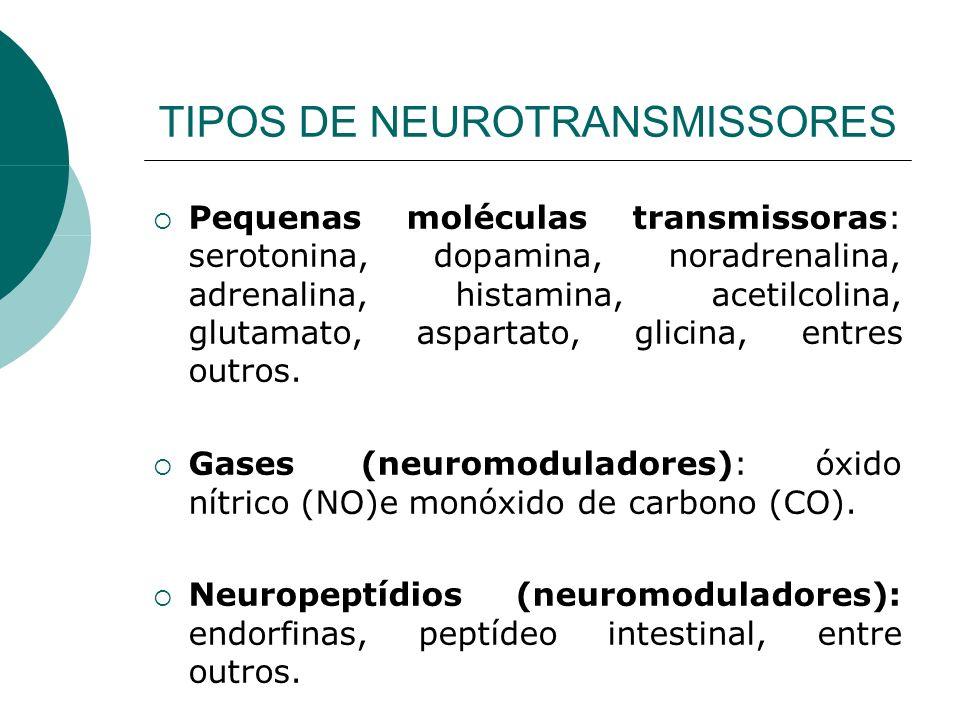 TIPOS DE NEUROTRANSMISSORES