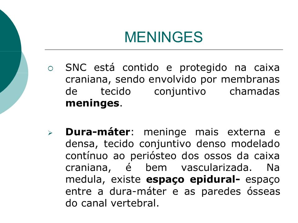MENINGES SNC está contido e protegido na caixa craniana, sendo envolvido por membranas de tecido conjuntivo chamadas meninges.