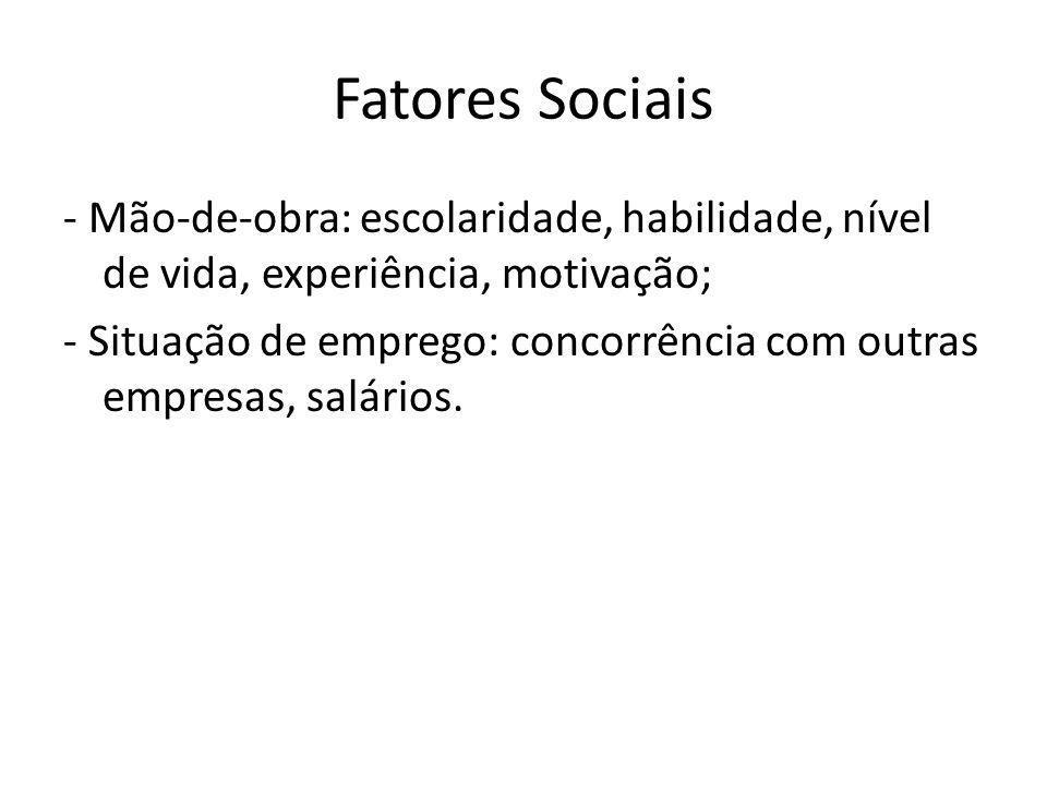 Fatores Sociais- Mão-de-obra: escolaridade, habilidade, nível de vida, experiência, motivação;