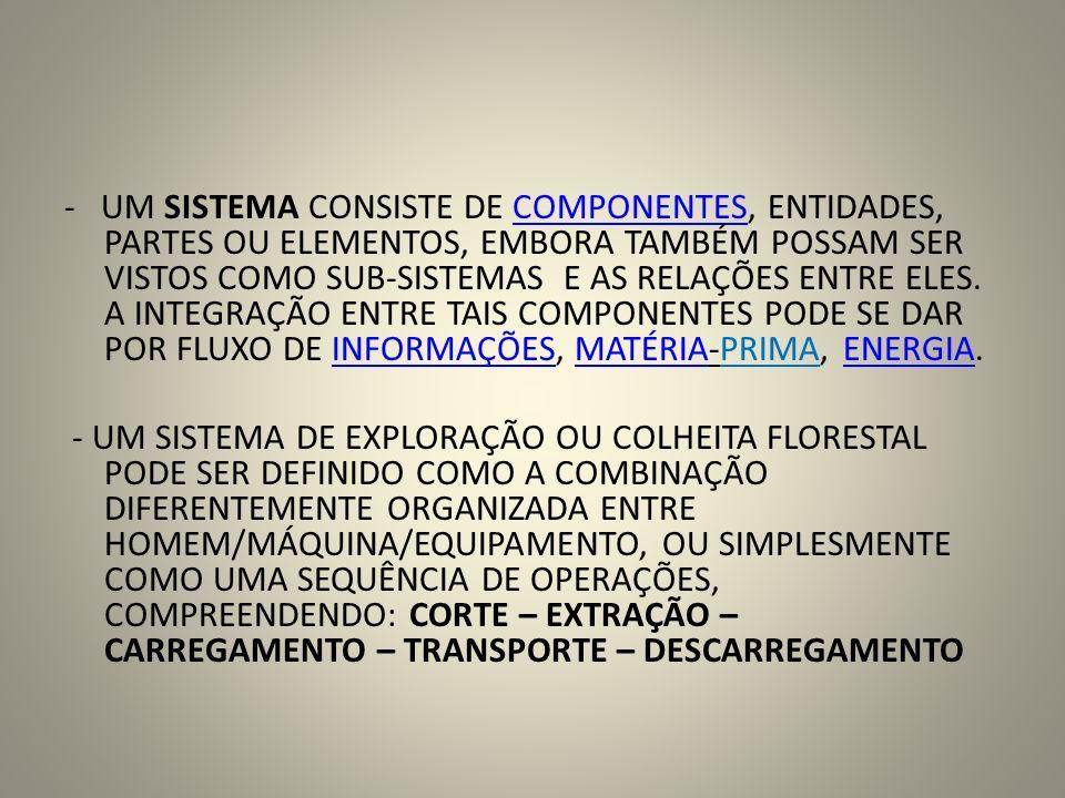 - UM SISTEMA CONSISTE DE COMPONENTES, ENTIDADES, PARTES OU ELEMENTOS, EMBORA TAMBÉM POSSAM SER VISTOS COMO SUB-SISTEMAS E AS RELAÇÕES ENTRE ELES. A INTEGRAÇÃO ENTRE TAIS COMPONENTES PODE SE DAR POR FLUXO DE INFORMAÇÕES, MATÉRIA-PRIMA, ENERGIA.