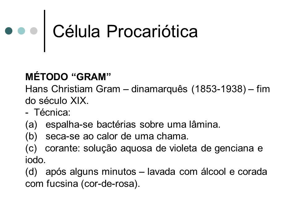 Célula Procariótica MÉTODO GRAM