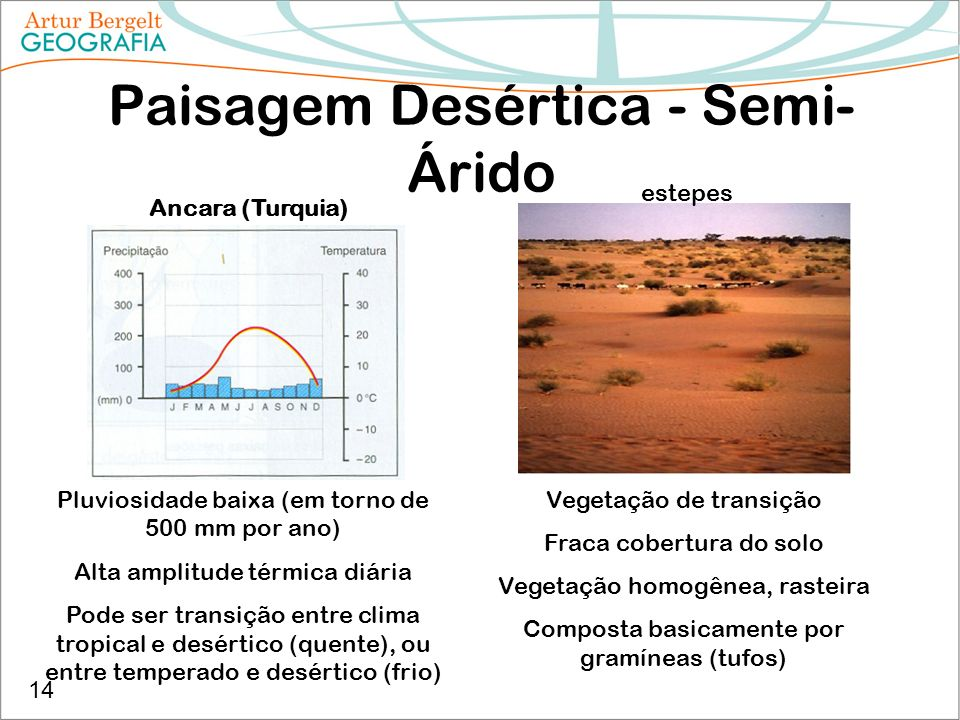 Paisagem Desértica - Semi-Árido