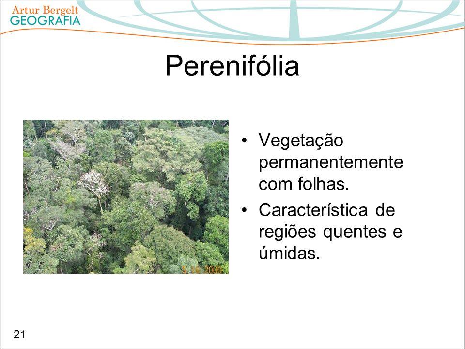 Perenifólia Vegetação permanentemente com folhas.