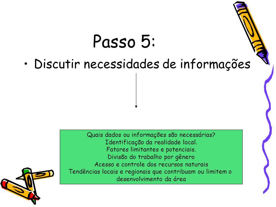 Passo 5: Discutir necessidades de informações