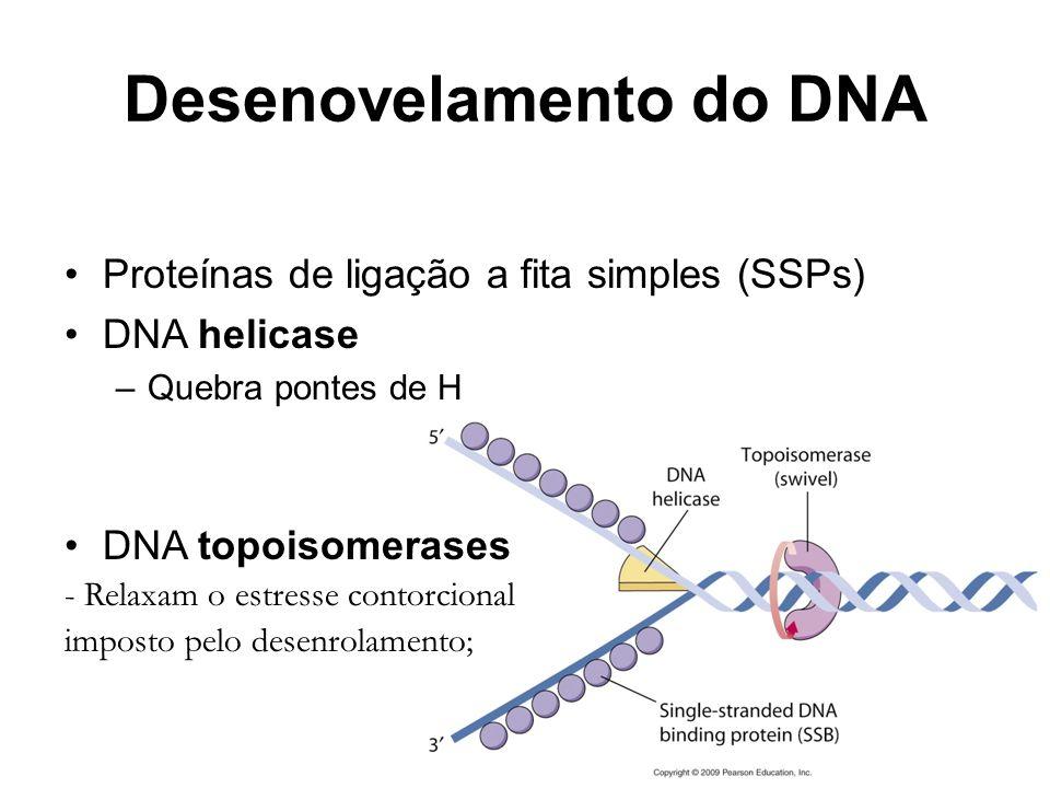 Desenovelamento do DNA