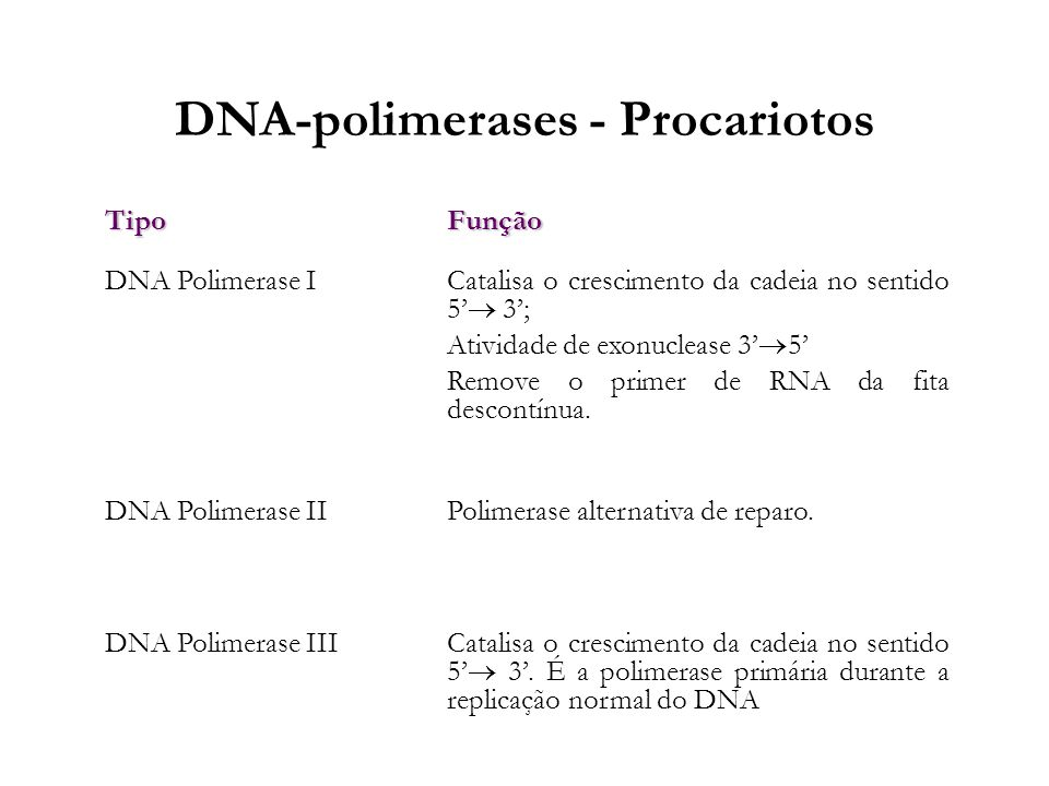 DNA-polimerases - Procariotos