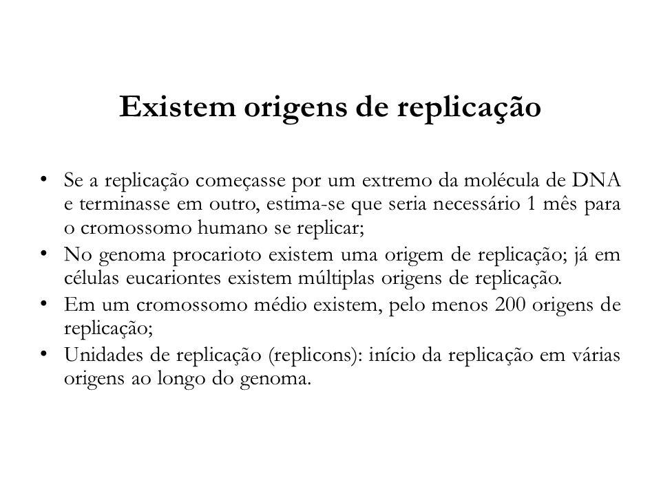 Existem origens de replicação