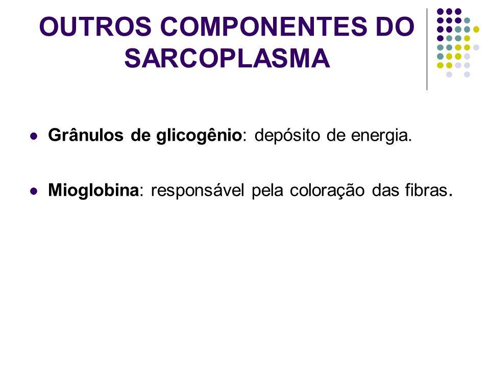 OUTROS COMPONENTES DO SARCOPLASMA
