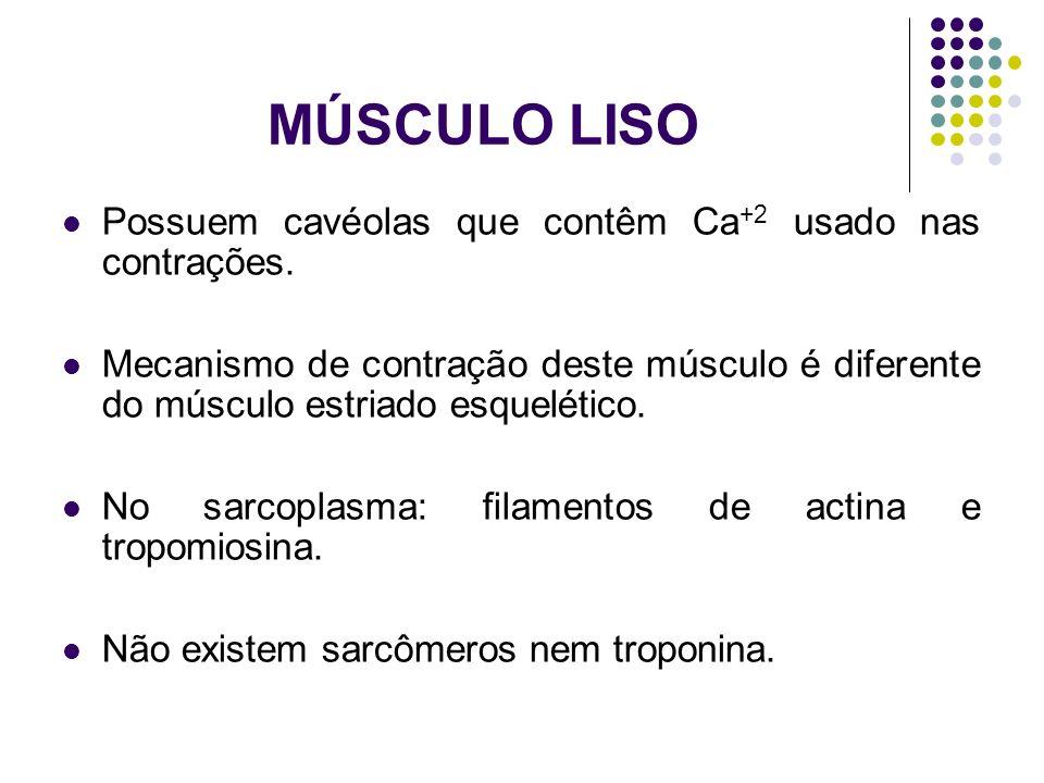 MÚSCULO LISO Possuem cavéolas que contêm Ca+2 usado nas contrações.