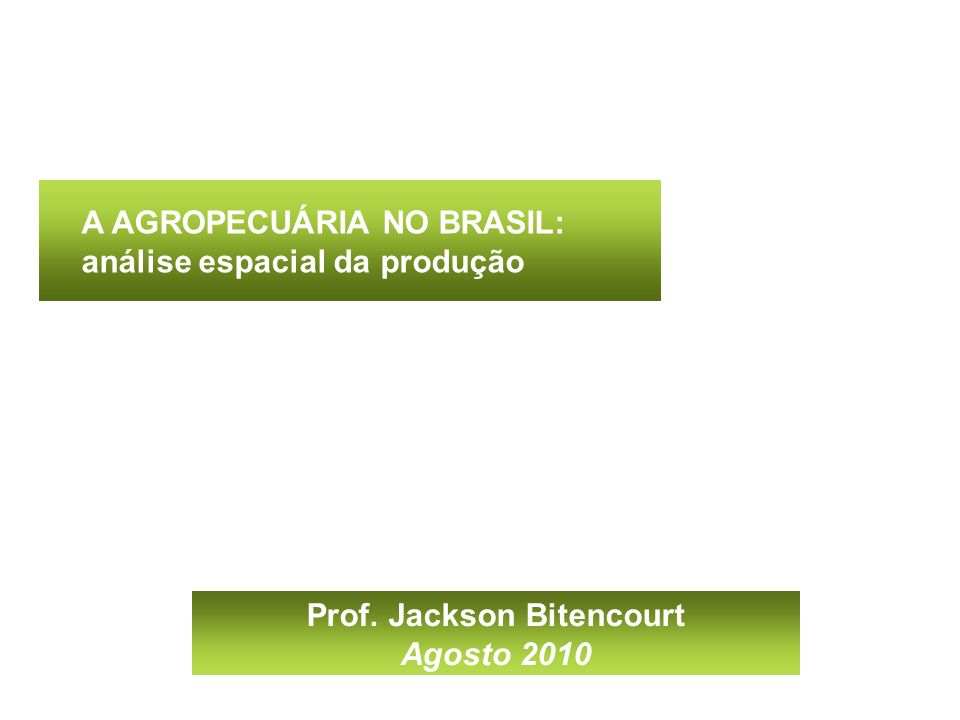 Prof. Jackson Bitencourt