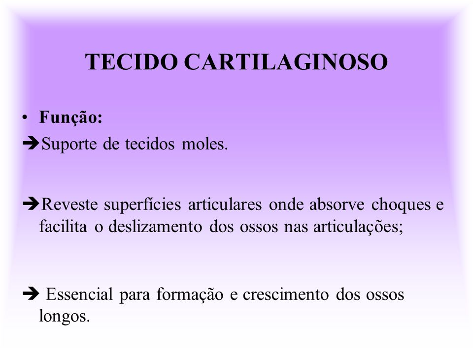 TECIDO CARTILAGINOSO Função: Suporte de tecidos moles.