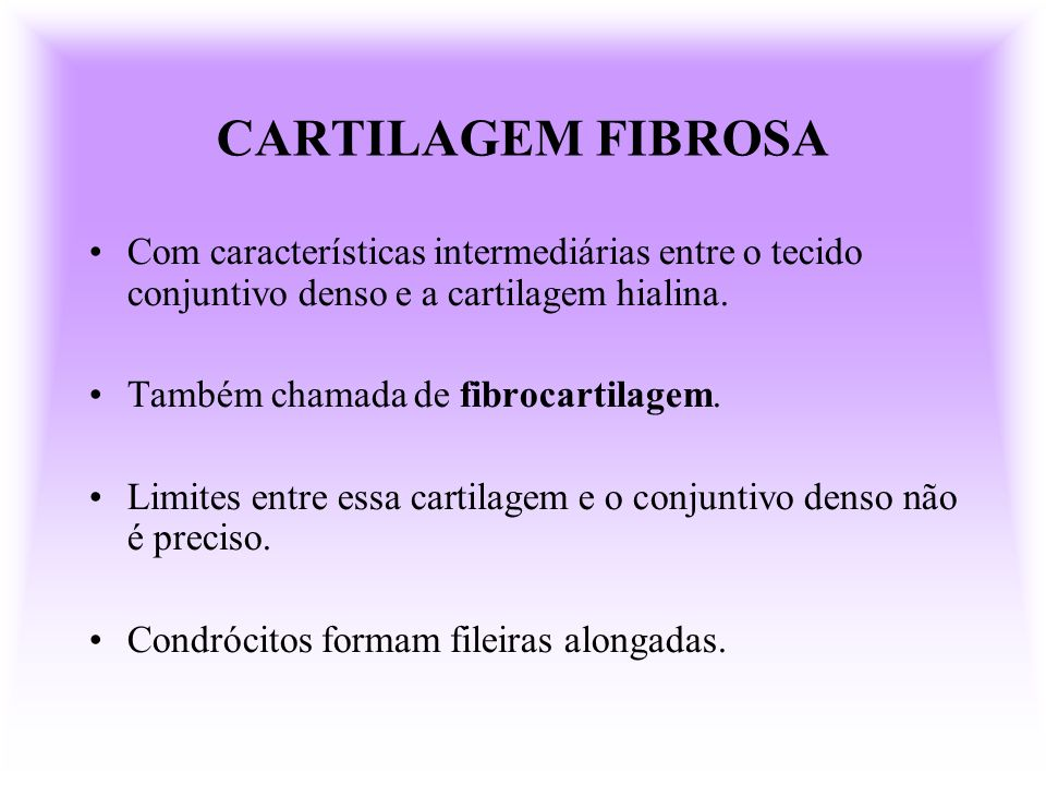 CARTILAGEM FIBROSA Com características intermediárias entre o tecido conjuntivo denso e a cartilagem hialina.