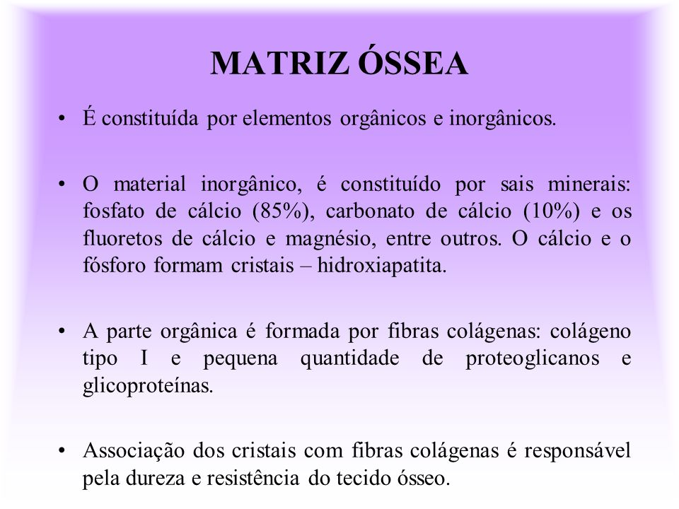 MATRIZ ÓSSEA É constituída por elementos orgânicos e inorgânicos.