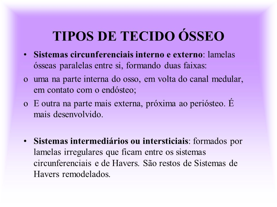 TIPOS DE TECIDO ÓSSEO Sistemas circunferenciais interno e externo: lamelas ósseas paralelas entre si, formando duas faixas: