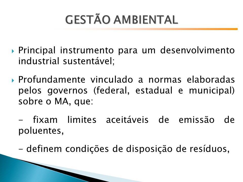 GESTÃO AMBIENTAL Principal instrumento para um desenvolvimento industrial sustentável;