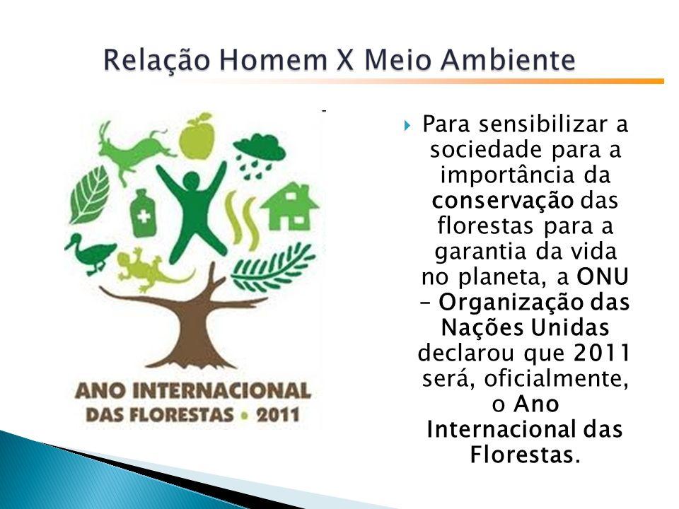 Para sensibilizar a sociedade para a importância da conservação das florestas para a garantia da vida no planeta, a ONU – Organização das Nações Unidas declarou que 2011 será, oficialmente, o Ano Internacional das Florestas.