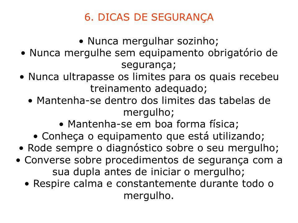6. DICAS DE SEGURANÇA