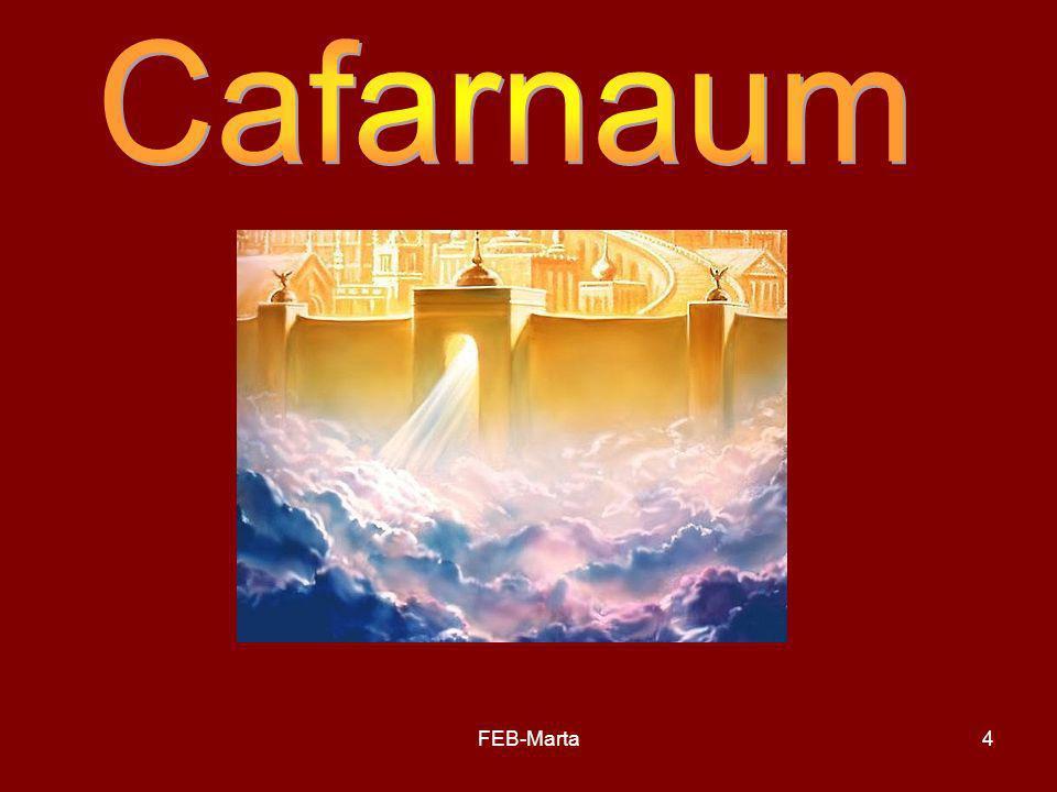 Cafarnaum FEB-Marta