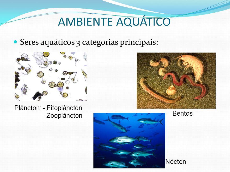 AMBIENTE AQUÁTICO Seres aquáticos 3 categorias principais: