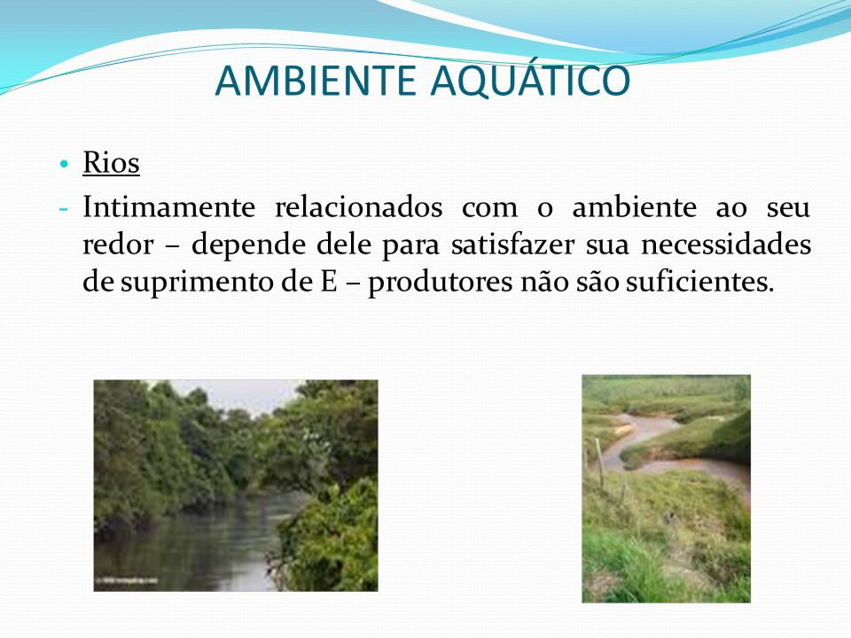 AMBIENTE AQUÁTICO Rios