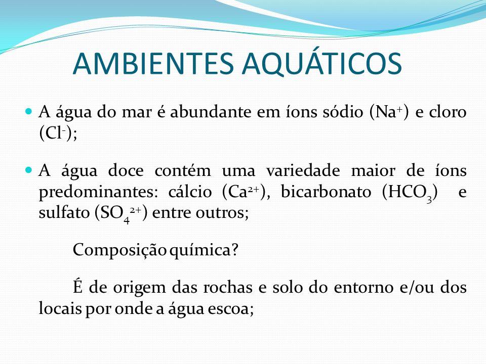 AMBIENTES AQUÁTICOS A água do mar é abundante em íons sódio (Na+) e cloro (Cl-);
