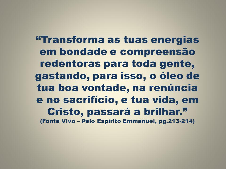 (Fonte Viva – Pelo Espírito Emmanuel, pg.213-214)