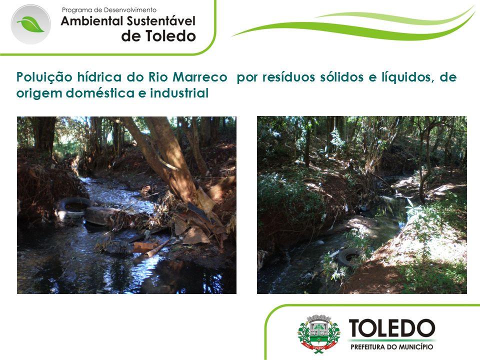 Poluição hídrica do Rio Marreco por resíduos sólidos e líquidos, de origem doméstica e industrial