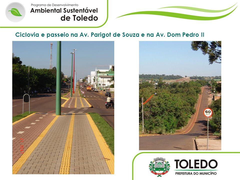 Ciclovia e passeio na Av. Parigot de Souza e na Av. Dom Pedro II