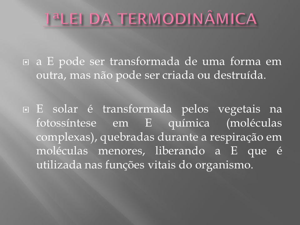 1ªLEI DA TERMODINÂMICA a E pode ser transformada de uma forma em outra, mas não pode ser criada ou destruída.