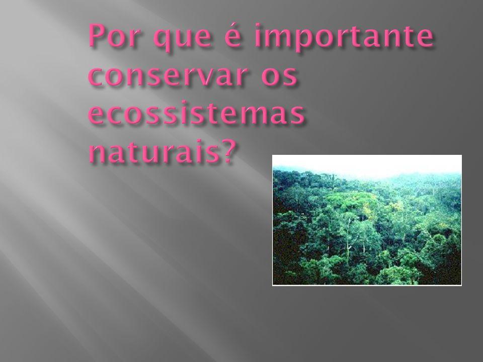 Por que é importante conservar os ecossistemas naturais