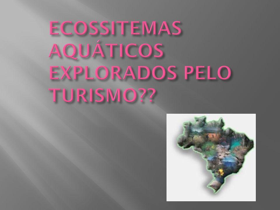 ECOSSITEMAS AQUÁTICOS EXPLORADOS PELO TURISMO