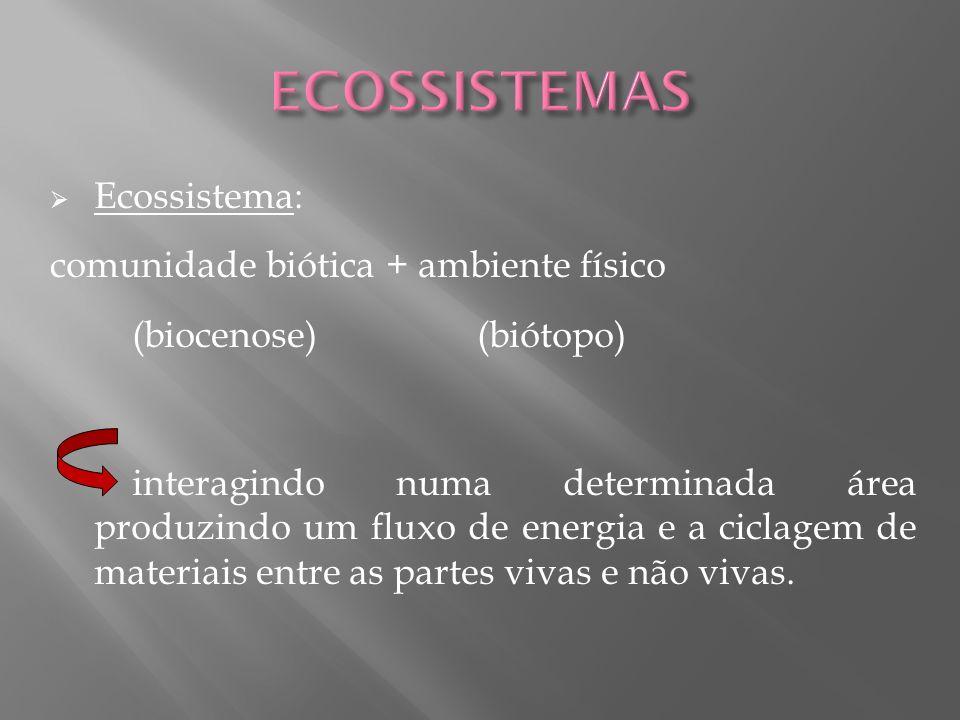 ECOSSISTEMAS Ecossistema: comunidade biótica + ambiente físico