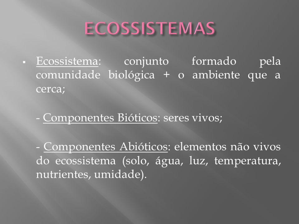 ECOSSISTEMAS Ecossistema: conjunto formado pela comunidade biológica + o ambiente que a cerca; - Componentes Bióticos: seres vivos;
