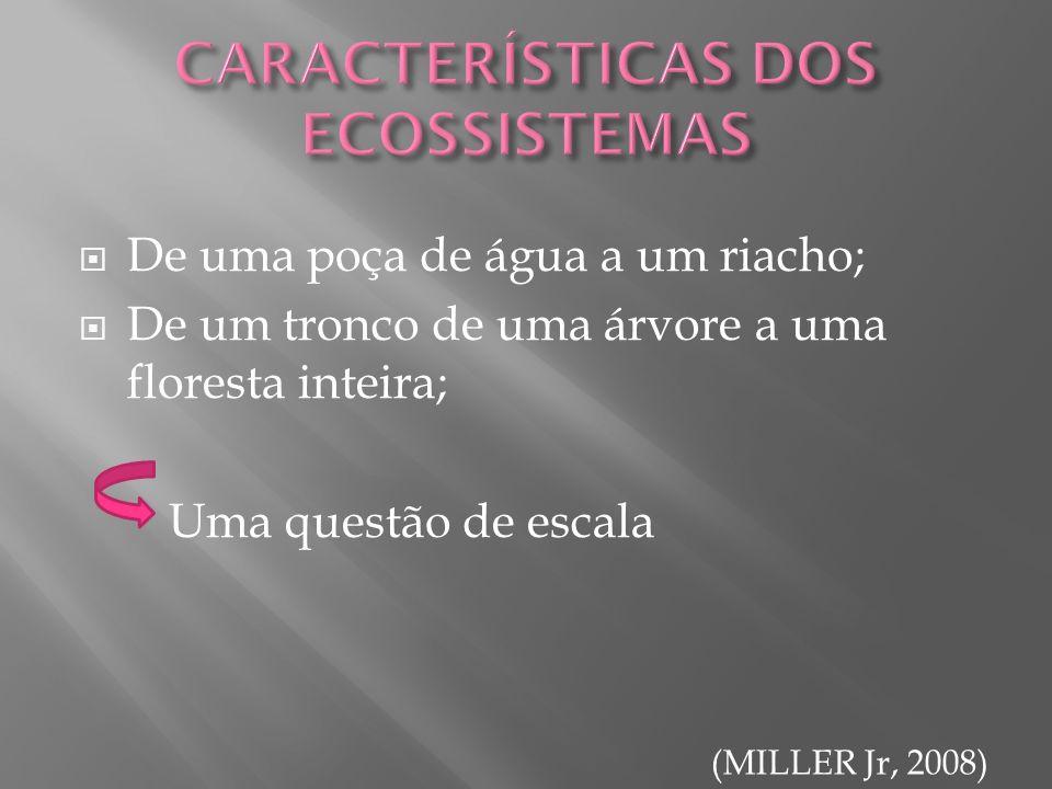 CARACTERÍSTICAS DOS ECOSSISTEMAS