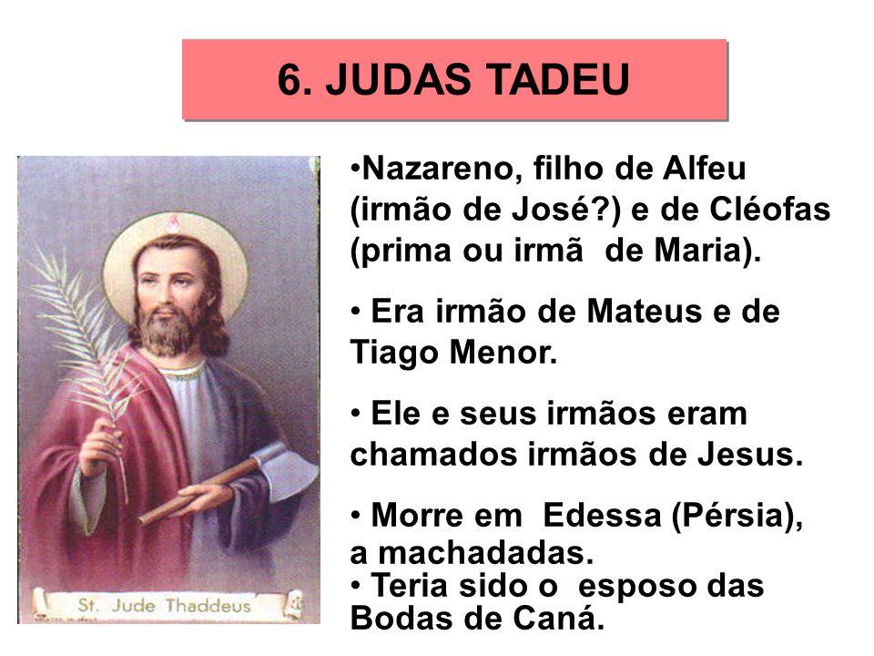 6. JUDAS TADEU Nazareno, filho de Alfeu (irmão de José ) e de Cléofas (prima ou irmã de Maria). Era irmão de Mateus e de Tiago Menor.