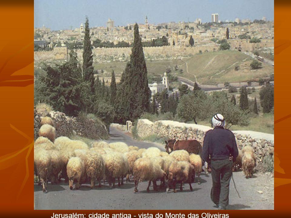 Jerusalém: cidade antiga - vista do Monte das Oliveiras