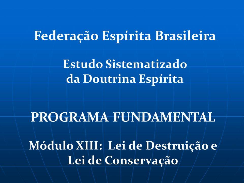 Federação Espírita Brasileira PROGRAMA FUNDAMENTAL