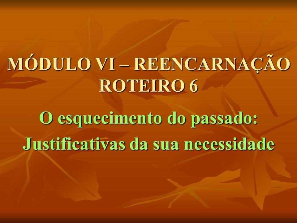 MÓDULO VI – REENCARNAÇÃO ROTEIRO 6