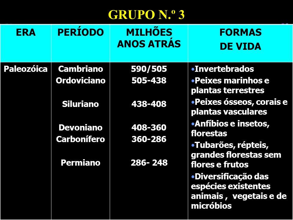 GRUPO N.º 3 ERA PERÍODO MILHÕES ANOS ATRÁS FORMAS DE VIDA Paleozóica