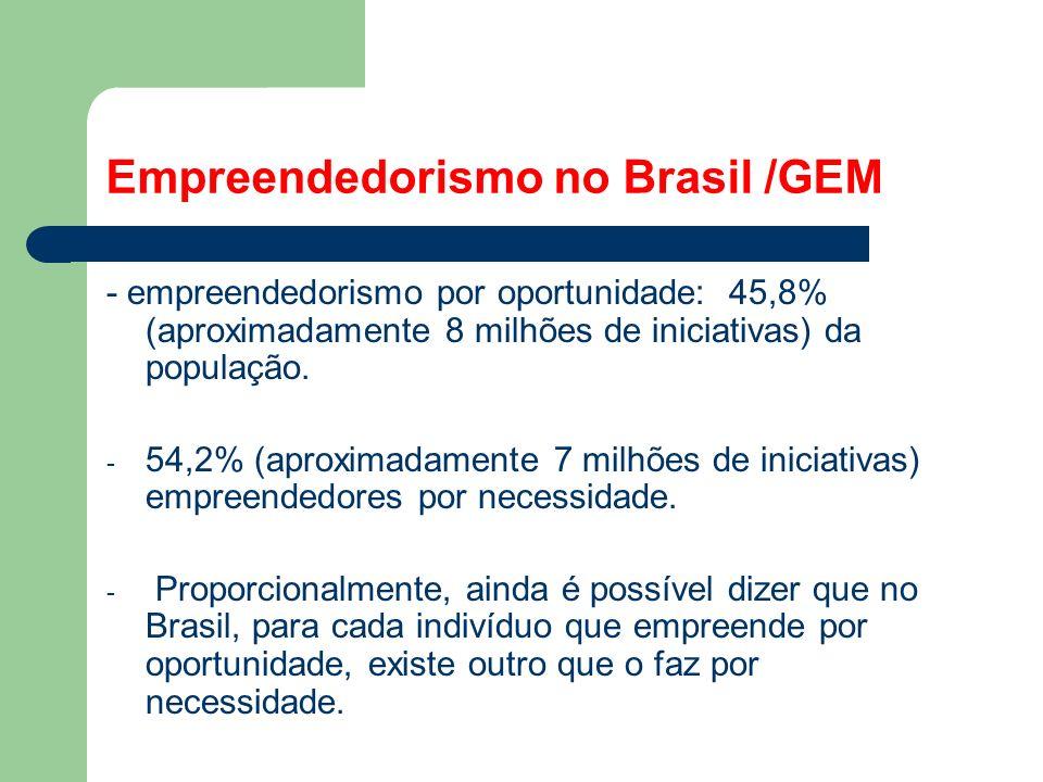 Empreendedorismo no Brasil /GEM