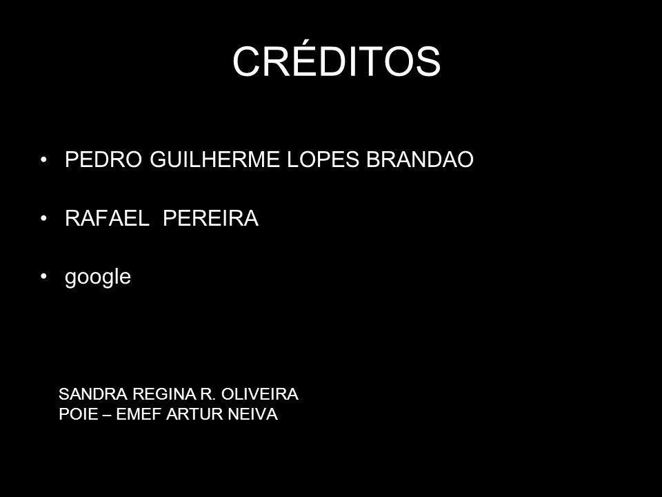 CRÉDITOS PEDRO GUILHERME LOPES BRANDAO RAFAEL PEREIRA google