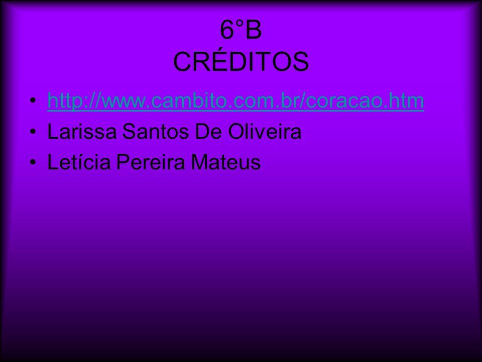 6°B CRÉDITOS http://www.cambito.com.br/coracao.htm