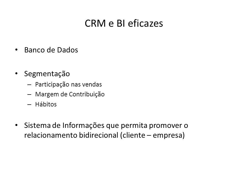 CRM e BI eficazes Banco de Dados Segmentação